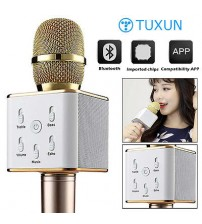 iKaraoke Q7 Wireless Microphone And Hifi Speaker