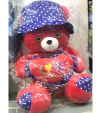 Cute Teddy Bear for girls and kids