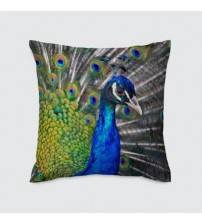 New Collection Digital Cushion
